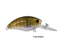 0935-True-Bream-Profile.png
