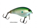 0554 A Pro Wake Citrus Sparkle