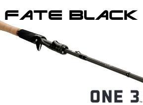 Fate-black_casting