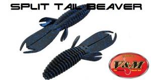 split-tail-beaver
